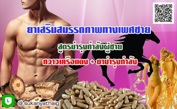 ยาเพิ่มฮอร์โมน เพศชาย กวาวเครือแดงผสมยาบำรุงกำลังผู้ชาย