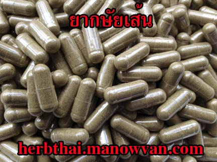 ยา กษัยเส้นสำหรับ สูตรป้องกันโรคเส้น