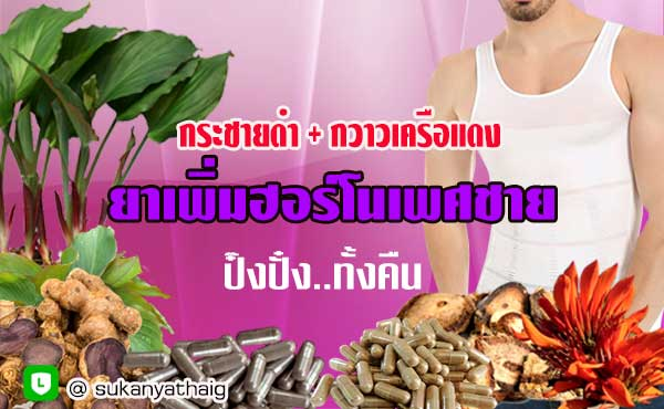 ยาอาหารเสริมเพิ่มฮอร์โมนเพศชาย กระชายดำผสมกวาวเครือแดงแคปซูล