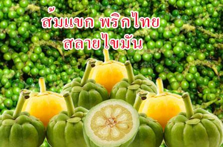 ตำราลดความอ้วน ส้มแขกและพริกไทยดำ