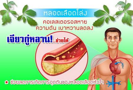 โรคความดันเบาหวาน คอเลสเตอรอล
